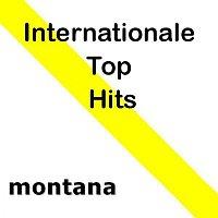 Various Artists.. – Internationale Top Hits
