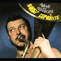 Přední strana obalu CD Avanie Et Framboise