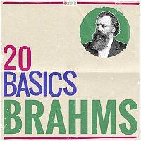 Aaron Rosand, Hugh Sung – 20 Basics: Brahms (20 Classical Masterpieces)