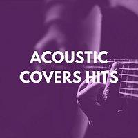 Různí interpreti – Acoustic Covers Hits