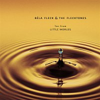 Béla Fleck & The Flecktones – 10 From Little Worlds