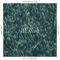 Bergs, 6AM – Meaning Of Life