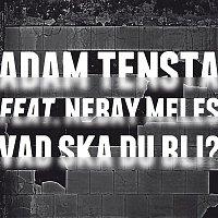 Adam Tensta – Vad ska du bli? (feat. Nebay Meles)