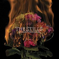 The Stills – Without Feathers