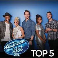 Různí interpreti – American Idol Top 5 Season 14