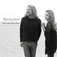 Přední strana obalu CD Raising Sand