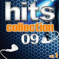 Různí interpreti – Hits Collection 09, Vol. 1