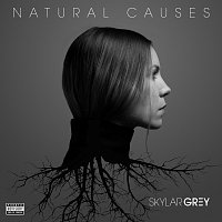 Skylar Grey – Natural Causes
