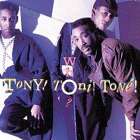 Tony! Toni! Toné! – Tony Toni Tone - Who?