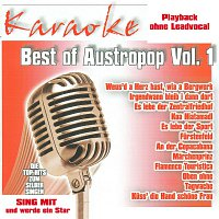Karaokefun.cc VA – Best of Austropop Vol.1 - Karaoke