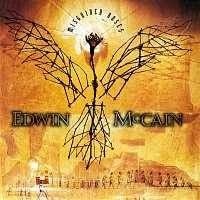 Edwin McCain – Misguided Roses