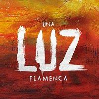 Přední strana obalu CD Una Luz Flamenca