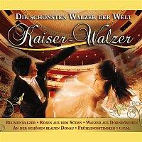 Norbert Neukamp, Strauss Orchester Wien – Kaiser-Walzer: Die Schonsten Walzer der Welt