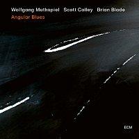 Wolfgang Muthspiel, Scott Colley, Brian Blade – Angular Blues