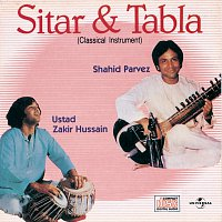 Ustad Shahid Parvez, Ustad Zakir Hussain – Sitar & Tabla