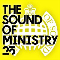 Alex Gaudino, Crystal Waters – The Sound of Ministry 25 - Ministry of Sound