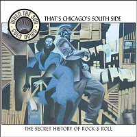 Big Bill Broonzy – That's Chicago's South Side (When the Sun Goes Down series)