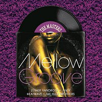 Various Artists.. – The Masters Series: Mellow Groove