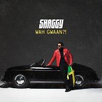Shaggy – Wah Gwaan?!