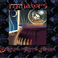 The Radiators – The Best of the Radiators: Songs from the Ancient Furnace