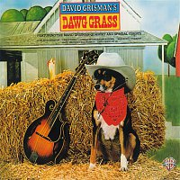 David Grisman – Dawg Grass