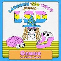 LSD, Lil Wayne, Sia, Diplo, Labrinth – Genius (Lil Wayne Remix)