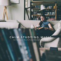 Chris Snelling, James Shanon, Max Arnald, Jonathan Sarlat, Chris Mercer, Nils Hahn – Calm Studying Music: Calming Classical Music for Focus, Concentration and Study