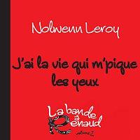 Nolwenn Leroy – J'ai la vie qui m'pique les yeux [La bande a Renaud, volume 2]