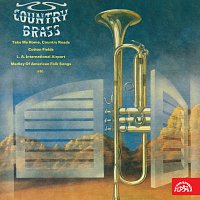 Country Brass, Vladimír Popelka – Country Brass