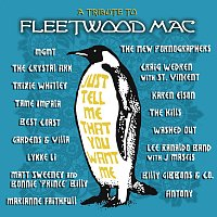 Přední strana obalu CD Just Tell Me That You Want Me: A Tribute To Fleetwood Mac