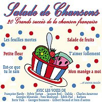 Přední strana obalu CD Salade de chansons