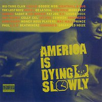 Various Artists.. – America Is Dying Slowly