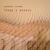 Antonín Strnad – Stopy v poušti
