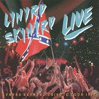 Lynyrd Skynyrd – Southern By The Grace Of God
