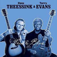 Hans Theessink & Terry Evans – True & Blue
