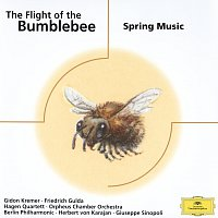Různí interpreti – The Flight of the Bumblebee - Spring Music