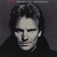 Sting – Why Should I Cry For You?