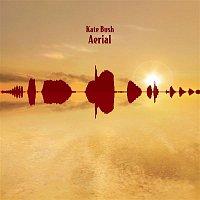 Kate Bush – Aerial
