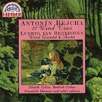 Rejcha, Beethoven: 12 trií pro dechy - Sextet, Dechový kvintet