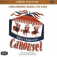 Různí interpreti – Selections From Carousel