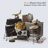 Wilco – What's Your 20? Essential Tracks 1994 - 2014