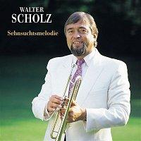 Walter Scholz – Sehnsuchtsmelodie