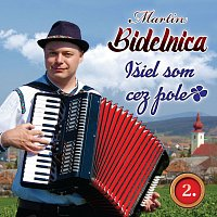 Martin Bidelnica – 2. Išiel som cez pole