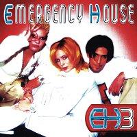 Emergency House – EH3