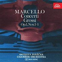 Janáčkův komorní orchestr Ostrava – Marcello: Concerti grossi