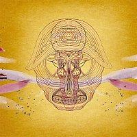 Devendra Banhart – What Will We Be