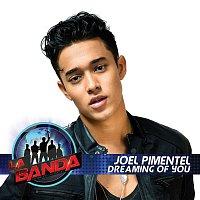 Joel Pimentel – Dreaming of You (La Banda Performance)