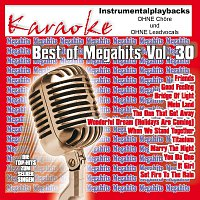 Karaokefun.cc VA – Best of Megahits Vol.30 - 100% Instrumental - ohne Vocals