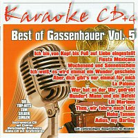 Karaokefun.cc VA – Best of Gassenhauer Vol.5