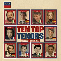 Různí interpreti – Ten Top Tenors